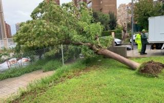 Personal de Actúa paliando los daños del temporal DANA