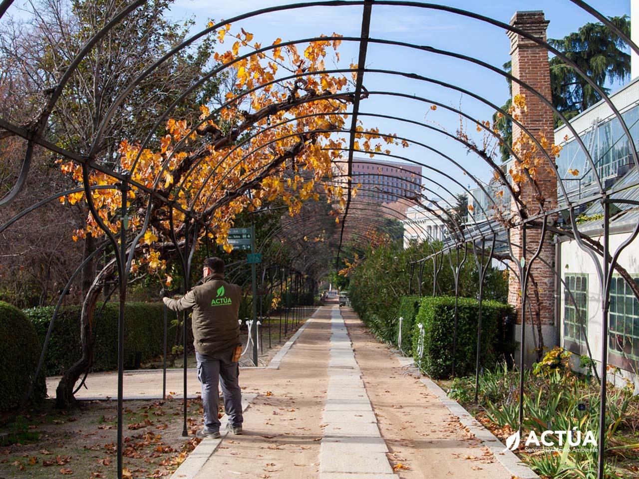 Mantenimiento de Jardines y Zonas Verdes
